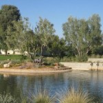 The McCormick Ranch Subdivision Series: Paseo Village