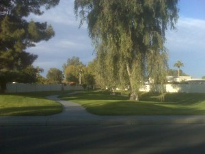 Paseo Village Greenbelt in McCormick Ranch
