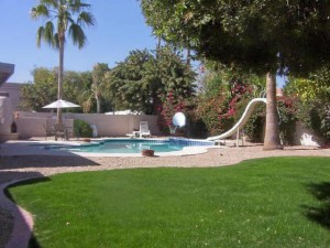 Paradise Park Trails Backyard & Pool