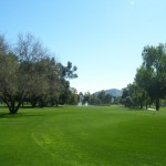 Fore! Orangetree Golf Course in Scottsdale